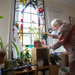 Lucinda Selchie, a resident of the Deborah Lincoln House  assisted living home in Belfast, waters her houseplants in this photo from May 2016. A new study shows that older Mainers enjoy a generally high degree of well-being, although levels of personal satisfaction and sense of purpose are low.