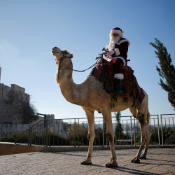 Israeli-Arab Issa Kassissieh wears a Santa Claus costume as he rides a camel during an annual Christmas tree distribution by the Jerusalem municipality, in Jerusalem's Old City, Dec. 20, 2016.