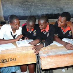 Students work together at the Ilpolei Secondary School in Kenya. Global education rates have soared in recent decades.