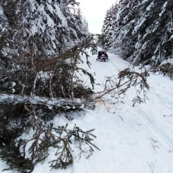Members of the Washburn Snowmobile Club, one in the trail groomer and a couple on sleds with a chainsaw and rope, worked steadily along Route 105 in Perham earlier in December, trying to clear the popular trail of blowdowns.