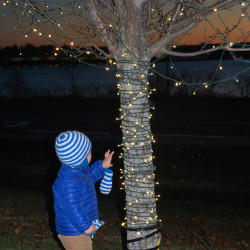 The Mercy community lit up the holiday season by hosting the second annual StarLights tree lighting ceremony and reception at its Fore River campus on Sunday, December 4.