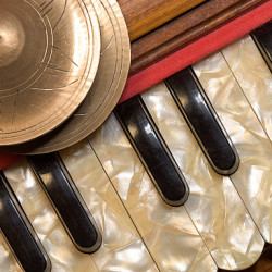 Satsang - an evening of chanting with harmonium and drum