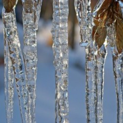 Freezing temperatures prompt NWS to issue wind chill advisory