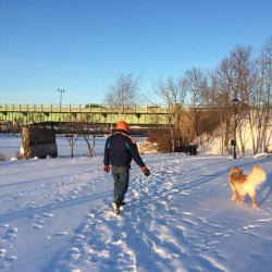 A local man and his dog go for a walk on Brewer's riverwalk trail on Monday. City officials have asked the Maine Department of Transportation whether they could extend the trail north by going under the Joshua Chamberlain Bridge and have received initial approval to do so. A public meeting is scheduled for 6 p.m. Tuesday at City Hall to discuss the plans.