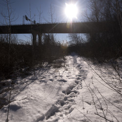Footprints lead to an area near the I-395 bridge along the Penobscot River where Bangor officials had a homeless camp removed in late December of 2016.