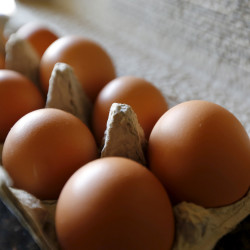 It's time for Turner egg factory to go cage free