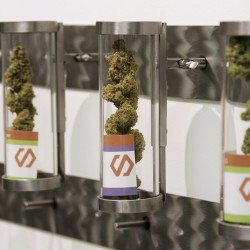 Displays at Shango Cannabis shop on the first day of legal recreational marijuana sales beginning at midnight in Portland, Oregon, Oct. 1, 2015.