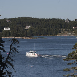 Islands will try again to join Emera Maine's electric grid