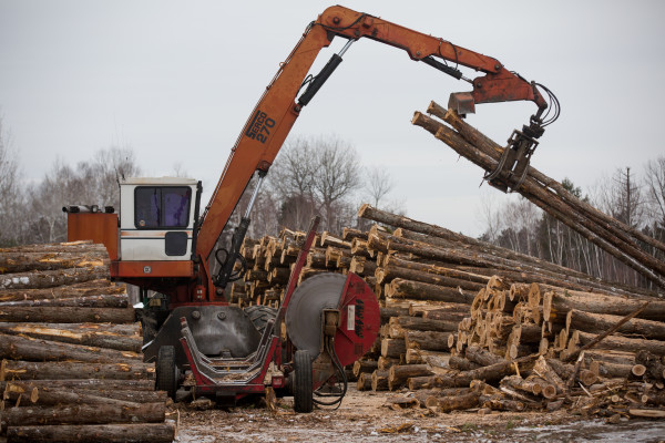 Workers cut logs at the American Forest Management wood yard in Passadumkeag, Jan. 18, 2017.