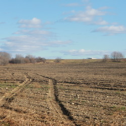 After the potato harvest, fields like this one near Mantle Lake Park in Presque Isle, seen in 2015, can lay bare until spring. Decades of potato farming in some areas has led to soil depletion and compaction, which many farmers are now trying to manage with cover crops and extended crop rotations.