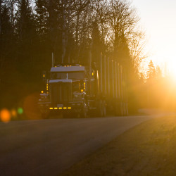An empty logging truck drives through Oxbow Plantation in this November 2016 file photo.