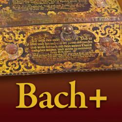 Bach +