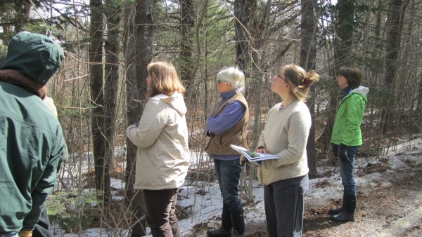 A winter walk around Merryspring Nature Center