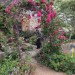 The public is invited to stroll through the walled garden at historic Cambo Estate in Scotland. The free illustrated program will take place at 2 p.m. Tuesday, February 21, at Belfast Free Library. PHOTO BY NAN COBBEY