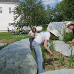 Community members gather at the Orono Community Garden.