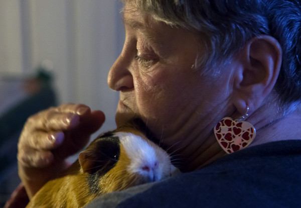 Geneva Belden holds her guinea pig, Pretty Girl, at her home in Bangor on Jan. 19. Belden fell on two occasions under the watch of service provider Branches. While those injuries were not necessarily caused by abuse or neglect, the state should have investigated those cases but never did.