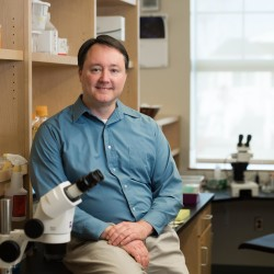 Aric Rogers, Ph.D., studies the mechanisms of aging at the MDI Biological Laboratory in Bar Harbor.