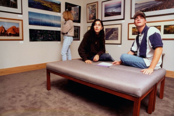 Artists with connections to Maine who work in every possible medium including watercolors, still lifes, oil paintings, pastels, sculptures, acrylics, photographs and printmaking, are featured at Husson University's Robert E. White Gallery.