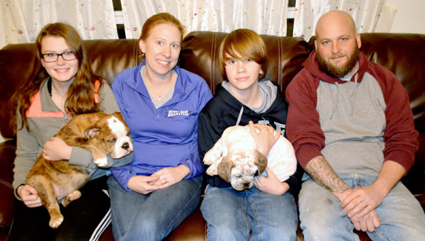 From left: Brooke, Jessica, Ashton and Pete Seiders. The Seiders family raises olde English bulldogges at their home in Bristol.