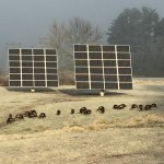 Waterville resident Peter Garrett powers his home and two other buildings on his property with these two solar arrays.