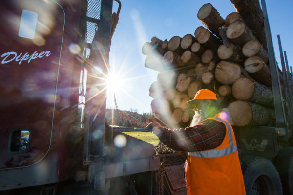 A bill co-sponsored by Republican U.S. Rep. Bruce Poliquin would allow 16- and 17-year-olds to work in logging operations under parental supervision.