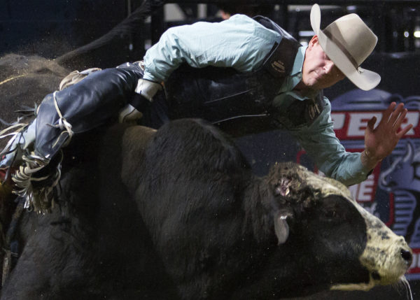 Nathan Burtenshaw tries to stay on Sarge during the Professional Bull Riders Velocity Tour &quotBangor Buck Off,&quot at Cross Insurance Center in Bangor Saturday.