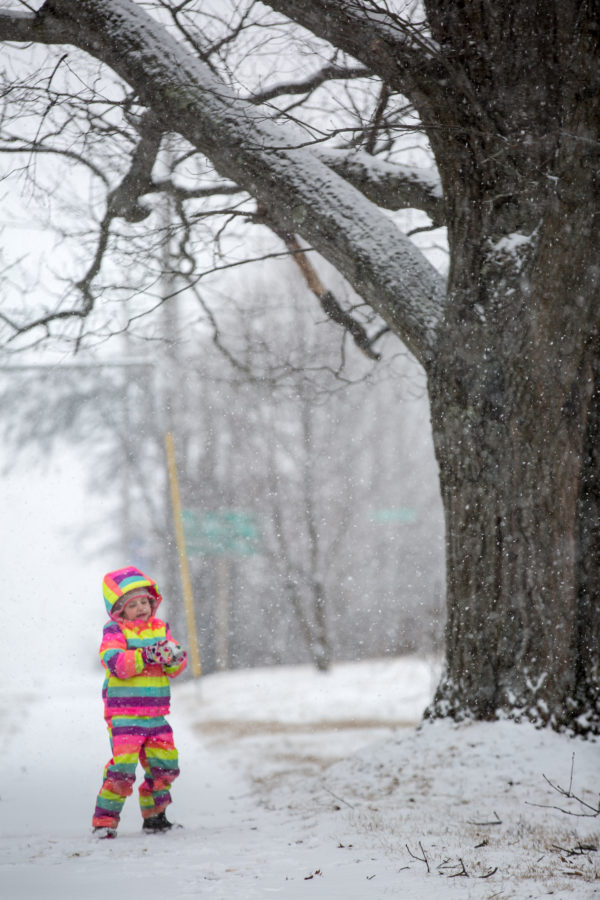 Della MacDonald, 5, enjoys the snowfall on Hammond Street in Bangor on Tuesday afternoon while waiting for an early release school bus with her nannies.