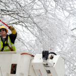 An Emera Maine worker trims ice covered branches from power lines on Peakes Hill Road in Dedham in 2013.