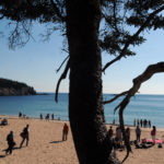 People enjoy a great day on Sand Beach in Acadia National Park