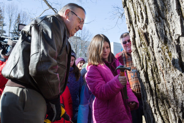 Gov. Paul LePage advises Brooklyn Tarbox, 10, of Gorham how to hammer a tap into the maple tree on the Blaine House lawn in Augusta last week.