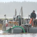 A seaweed harvester maneuvers a barge in July 2016 while harvesting rockweed near the Muscle Ridge Islands off Spruce Head, Maine. A judge has ruled in a lawsuit filed in Washington County that private landowners can prohibit harvesters from taking seaweed growing in the intertidal zones of their properties.