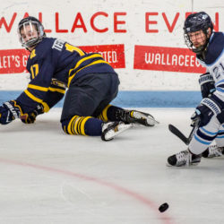 Quinnipiac's K.J. Tiefenwerth (left) looks back at the puck over his shoulder after losing it to University of Maine's Cam Brown during their game at Alfond Arena in October.