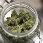 Medical marijuana is shown in a jar in Seattle, Washington, Jan. 27, 2012.