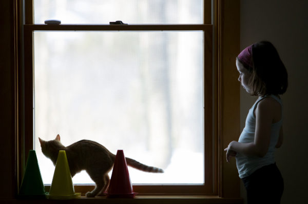 Clara Connolly, 8, looks out the window with Mango before cat yoga at P.A.W.S. Animal Adoption Center in Camden Wednesday. The third Wednesday of every month, Coastal Maine Yoga provides free yoga classes with adoptable cats at the center.