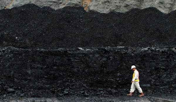 A worker walks near a coal hill which is ready to be mined at the Berau district in Indonesia's East Kalimantan province Aug. 15, 2010.