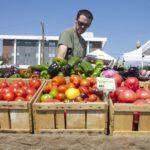A farmer stacks vegetables at the Bangor Farmers Market.