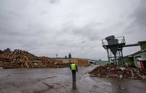"Robbins Lumber president Jim A. Robbins walks through the lumber yard on a rainy winter day. As it churns out boards, planks and lumber by the truckload each day, the Searsmont business ends up with a lot of leftovers. Every day, the company's saws and grinders produce about 90 tons of woodchips, enough to fill three truckloads. ""If we don't have that pulp market, it then becomes upside down and now becomes a waste stream for us,"" said Robbins. ""That's very much a concern on every sawmill radar screen right now."""