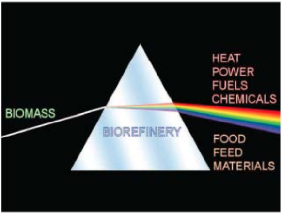 In a loan guarantee application to the U.S. Department of Energy, EMEP LLC described the East Millinocket project visually as a prism through which raw biomass would turn into various shades of revenue.
