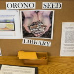 The Orono seed library is seen in old card catalog bins at the Orono Public Library in Orono. The seed library is a central location where community members can store, trade, and get free seeds.
