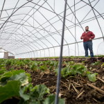Mike Bahner shows off one of his hoop houses on a late winter day at Bahner Farm in Belmont.