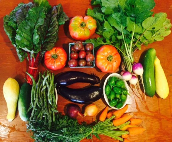 Pictured: An example weekly summer CSA share from Wandering Root Farm.