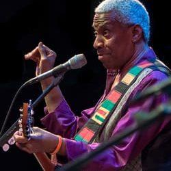 Singer-songwriter, Reggie Harris, will headline the next Concert for a Cause in Auburn.