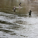 Fly fishermen try their hands at catching landlocked salmon at Grand Lake Stream during opening day of open water fishing season in Grand Lake Stream Saturday.