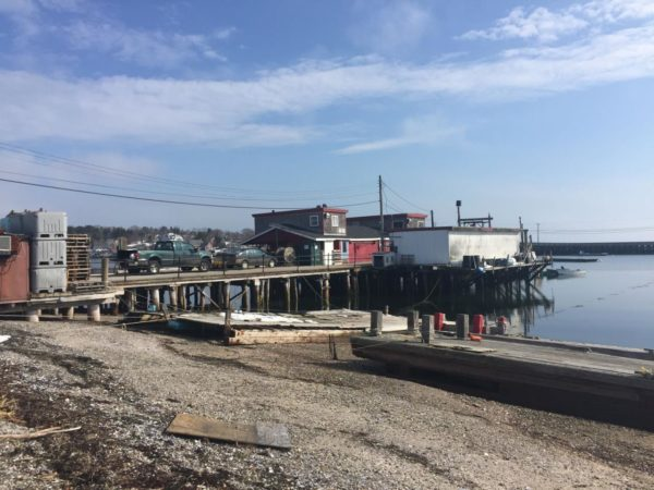 The commercial wharf at Cook's Lobster & Ale House on Bailey Island will be sold at auction on April 25.