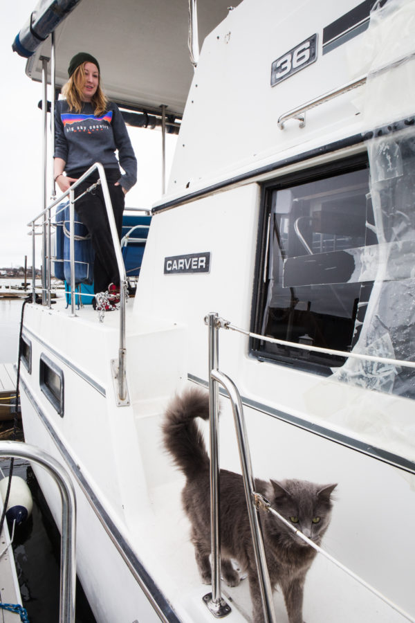 A cat named Blue patrols the deck of the boat Krystin Noyes called home all winter in Portland. Noyes and her boyfriend, along with the cat and a dog, live aboard the 36-foot boat in Dimillo's Marina.