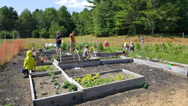 The garden at Gray-New Gloucester Middle School, where teachers Stephanie Enaire and Morgan Kerr have incorporated agriculture and other nature-based learning themes into their curriculum.