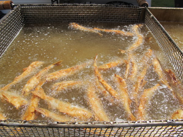 Smelts cook in the fryer at the Columbia Falls Smelt Fry on April 15.