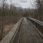 BRUNSWICK, Maine -- 04/17/17 -- A boardwalk leads into the forest to Cox Pinnacle on April 17, in Brunswick. Reaching 350 feet above sea level, Cox Pinnacle is the highest point in Brunswick, and it is located a 103-acre forested park owned by the Town of Brunswick. (Aislinn Sarnacki | BDN)