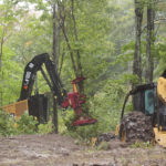 A grapple skidder and a feller buncher work in the woods during a September 2015 logging demonstration in Millinocket. An economic report out Tuesday says the state isn't harvesting as much from its forests as it could.