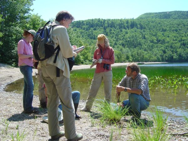 Eagle Hill seminar instructor Anton Reznicek, kneeling, right, discusses sedges with students.